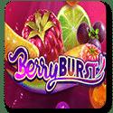 berryBurst-logo