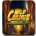 Wild Cauldron Slot Review - Quickspin