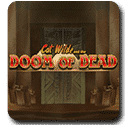 Cat Wilde and the Doom of Dead – Play'n Go Video Slot